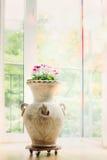 Bella decorazione interna domestica con il vaso ed i fiori dell'anfora Immagini Stock Libere da Diritti