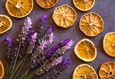 Bella disposizione posta piana di vista superiore delle arance asciutte e del mazzo porpora e rosa dei fiori della lavanda su fon immagine stock libera da diritti