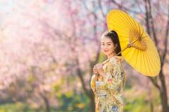 Bella donna asiatica che indossa il fiore giapponese tradizionale di ciliegia e del kimono in primavera, Giappone fotografia stock libera da diritti
