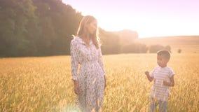 Bella donna asiatica che parla con suo piccolo figlio mentre camminando sull'ampio giacimento di grano sul tramonto archivi video
