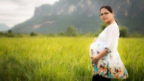 Bella donna asiatica incinta nel giacimento del riso Immagine Stock