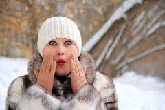 Bella donna in cappotto di inverno Immagine Stock Libera da Diritti