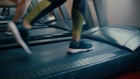 Bella donna castana sportiva degli anni medii che cammina, corrente sull'allenamento della palestra della pedana mobile 4 K archivi video