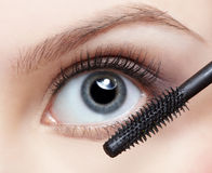 Bella donna che applica mascara Fotografie Stock