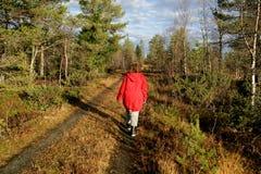Bella donna che cammina vicino Fotografie Stock