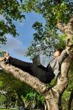 Bella donna che riposa sull'albero con il computer portatile Immagine Stock