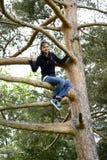 Bella donna che si siede su un albero alto Fotografie Stock