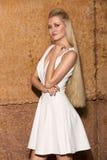 Bella donna con capelli biondi lunghi che sorride in un vestito Immagini Stock Libere da Diritti
