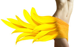 Bella donna con i petali del girasole sulle sue anche Fotografie Stock