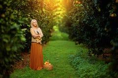 Bella donna con il canestro di frutta in frutteto immagine stock libera da diritti