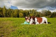 Bella donna con un cavallo nel campo Ragazza sopra Fotografia Stock Libera da Diritti