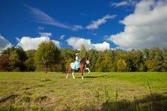 Bella donna con un cavallo nel campo Ragazza sopra Fotografia Stock