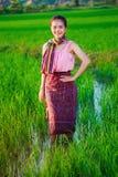 Bella donna dell'agricoltore in riso verde archivato Immagine Stock Libera da Diritti