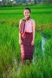 Bella donna dell'agricoltore in riso verde archivato Fotografia Stock