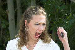 Bella donna di affari; pazzia Fotografia Stock Libera da Diritti