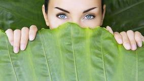 Bella donna e foglie tropicali fotografia stock libera da diritti