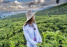 Bella donna graziosa nella condizione del cappello alle piantagioni di tè verde fotografia stock