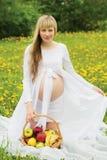 Bella donna incinta all'aperto Fotografie Stock Libere da Diritti