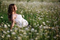 Bella donna incinta che fa yoga nel campo della camomilla Immagine Stock Libera da Diritti