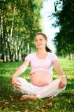 Bella donna incinta che si distende nella sosta Fotografia Stock