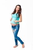 Bella donna incinta del brunette Immagini Stock Libere da Diritti