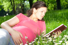 Bella donna incinta in sosta Fotografie Stock
