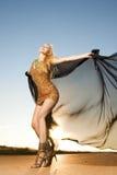 Bella donna nel dancing dell'oro Immagini Stock Libere da Diritti
