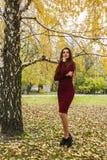 Bella donna riflessa in un parco di autunno immagini stock libere da diritti