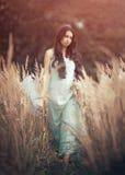 Bella, donna romantica nella favola, crisalide di legno fotografia stock libera da diritti