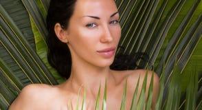 Bella donna sexy che prende il sole fra le foglie di palma Stazione termale all'aperto, fotografie stock libere da diritti