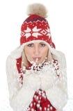 Bella donna in vestiti caldi di inverno Fotografia Stock