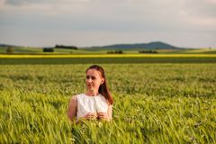Bella donna in vestito bianco sul giacimento di grano verde Fotografie Stock