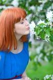 Bella donna in vestito blu vicino di melo Fotografia Stock