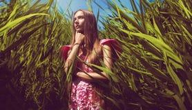 Bella donna in vestito rosa in alta erba Immagini Stock