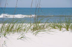 Bella duna di sabbia Fotografie Stock Libere da Diritti