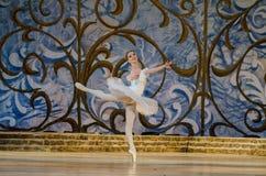 Bella durmiente del ballet clásico Fotografía de archivo libre de regalías