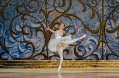 Bella durmiente del ballet clásico Foto de archivo libre de regalías