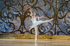 Bella durmiente del ballet clásico Fotos de archivo libres de regalías
