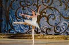 Bella durmiente del ballet clásico Fotografía de archivo
