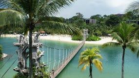 Bella e chiara natura di Singapore immagini stock