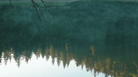 Bella e foschia misteriosa di mattina dal lago Synevir in Carpathians archivi video