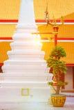 Bella e posta classica della lampada di arte in tempio tailandese Wat Mahatha Immagini Stock