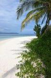 Bella e spiaggia naturale pura 03 Immagini Stock
