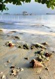 Bella e spiaggia naturale pura Fotografia Stock