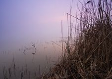 Bella ed alba calma. Immagine Stock