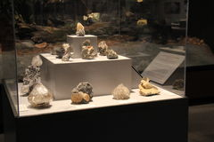 Bella esposizione delle gemme e dei minerali in caso di vetro, museo dello stato, Albany, New York, 2016 Fotografia Stock Libera da Diritti