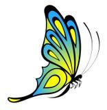 Bella farfalla per un disegno Immagine Stock Libera da Diritti