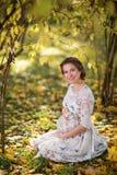 bella femmina incinta in autunno fotografia stock libera da diritti