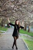 Bella fioritura della molla e della ragazza Fotografia Stock