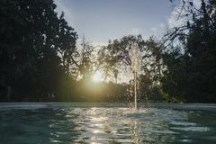 Bella fontana in lampadina Immagini Stock
